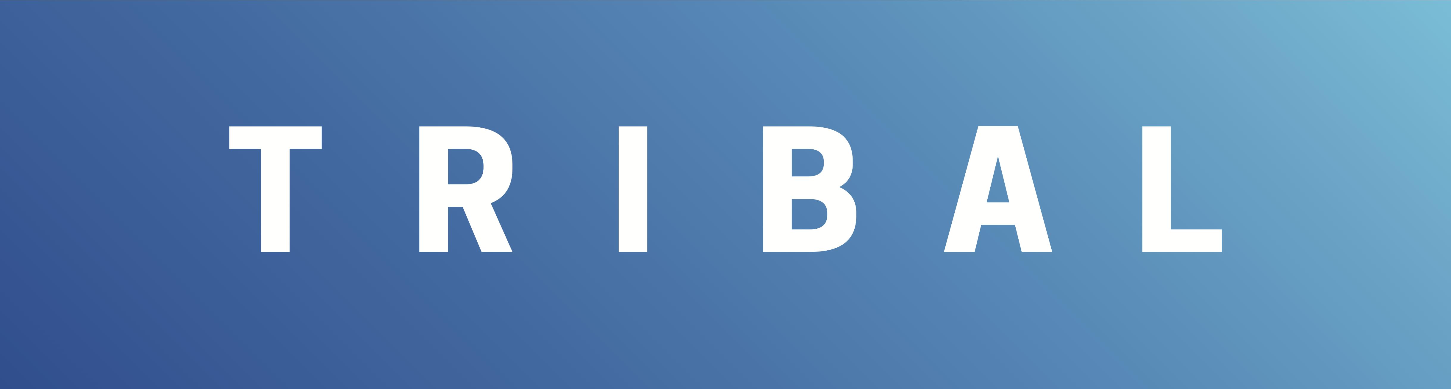 TRIBAL GROUP PLC Logo