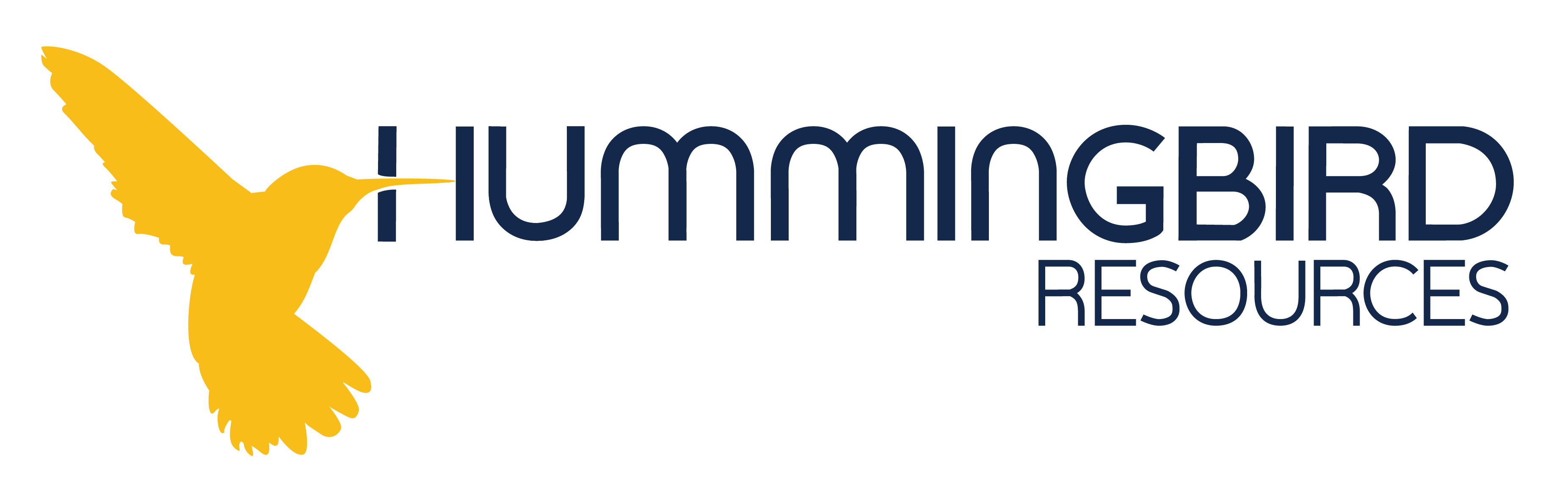 HUMMINGBIRD RESOURCES PLC Logo