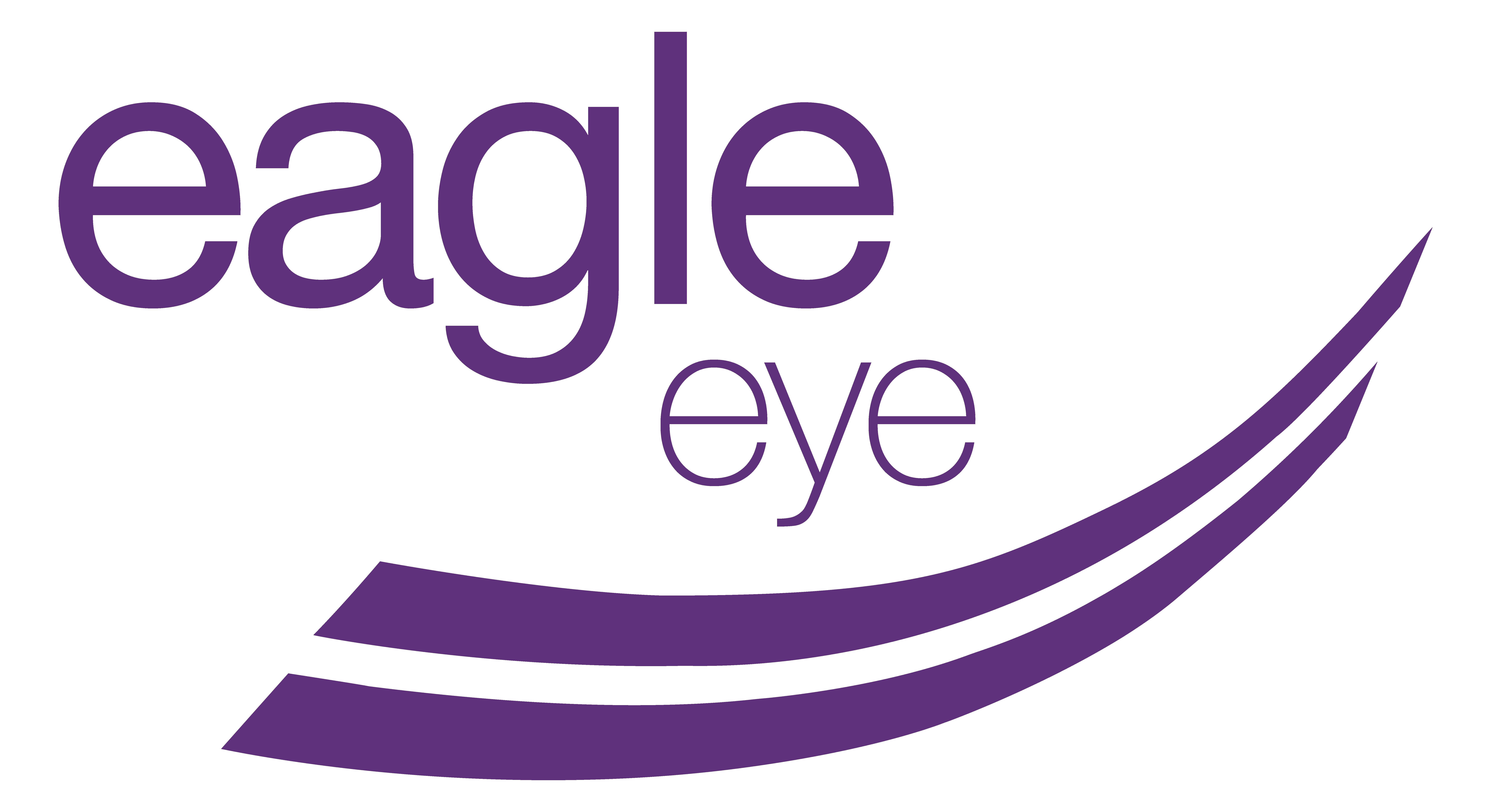 EAGLE EYE SOLUTIONS GROUP PLC Logo